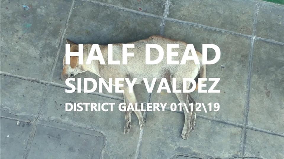 Half Dead by Sidney Valdez