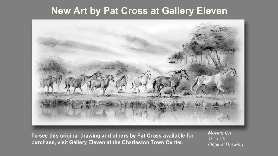 New Art by Pat Cross at Gallery Eleven