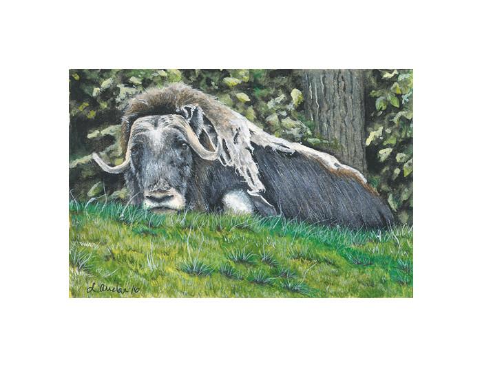 Grassy Repose by Lonetta Avelar