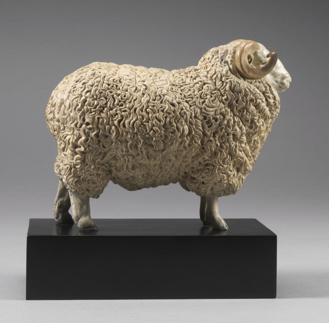 'William' Whiteface Dartmoor Ram