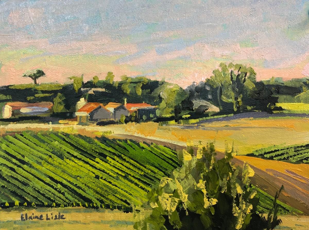 Mondou Vineyards Dusk by Elaine Lisle