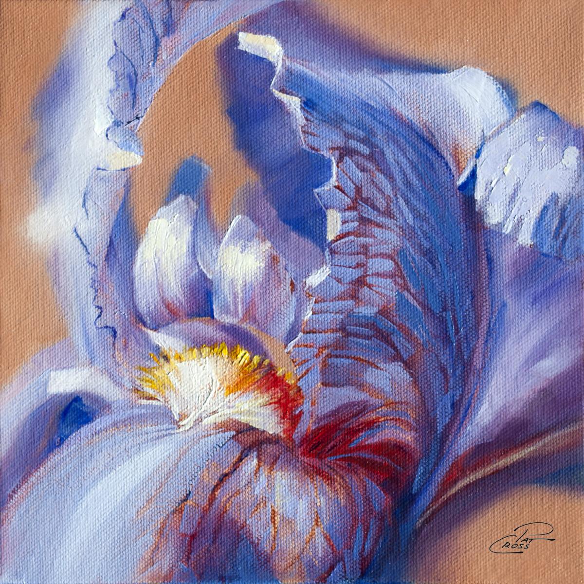 Regal Iris by Pat Cross