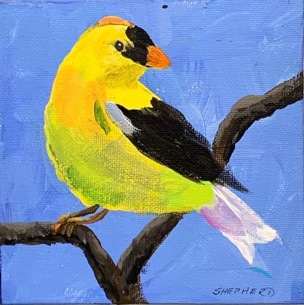 Gold Finch by Liz Shepherd