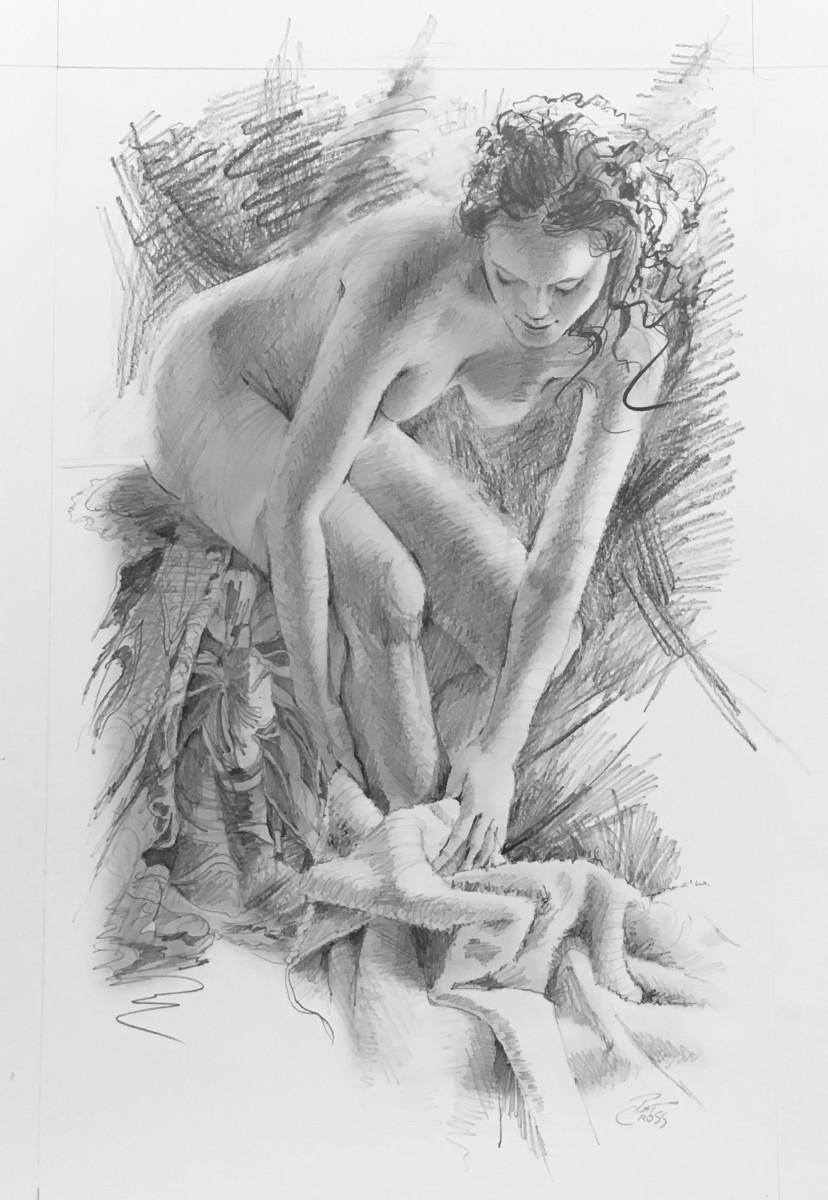 The Towel by Pat Cross
