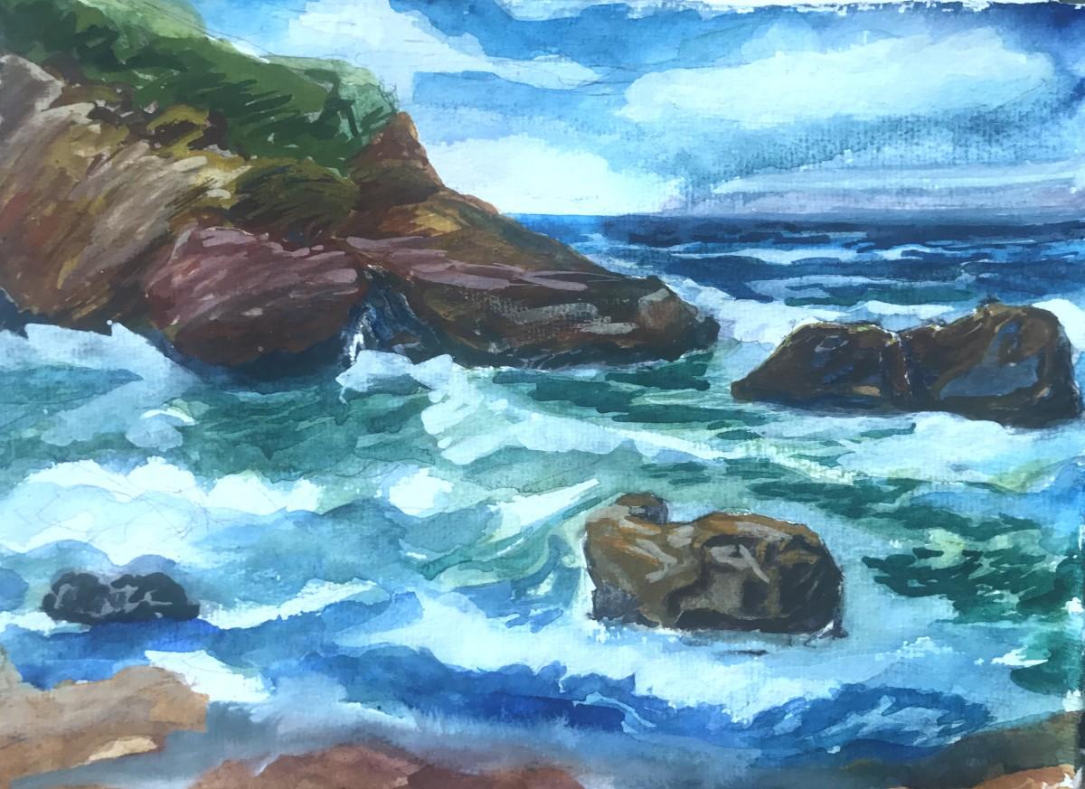 553- Harris  Beach study