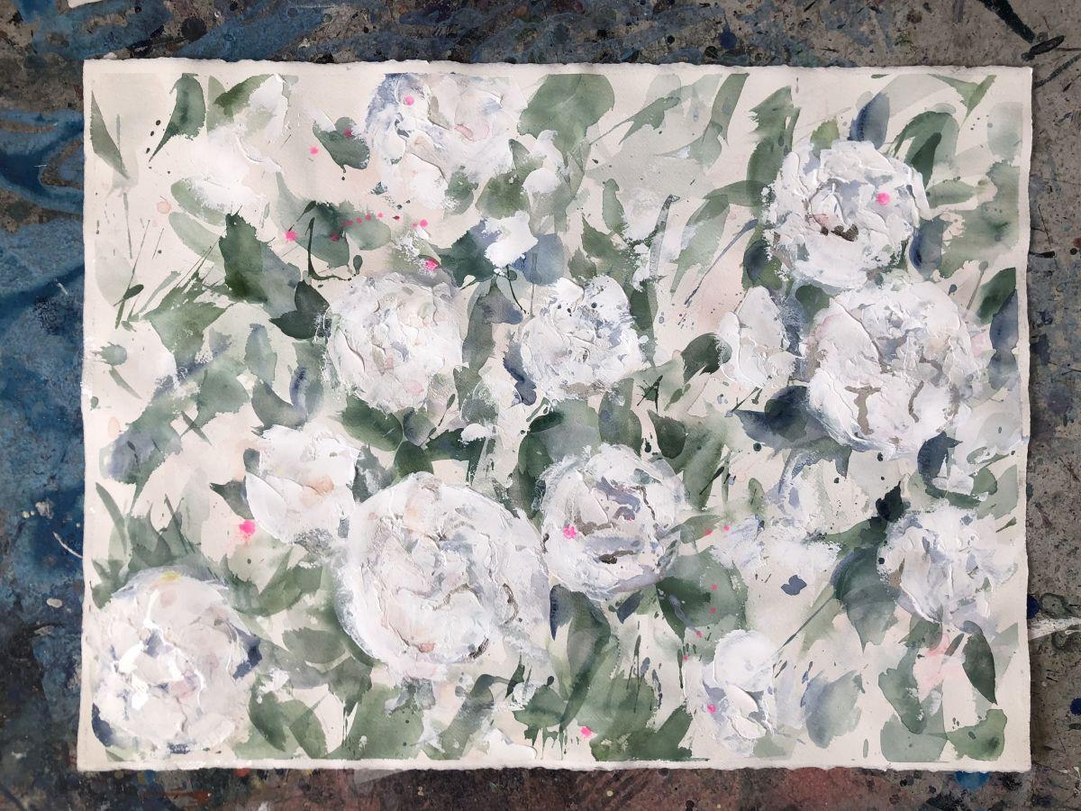 Peony Blooms by Dana Mooney