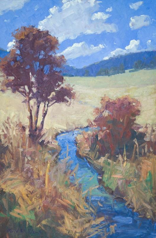 Sky Meadow Stream