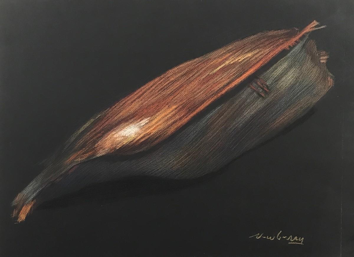 Palm Pod Husk by Michael Newberry