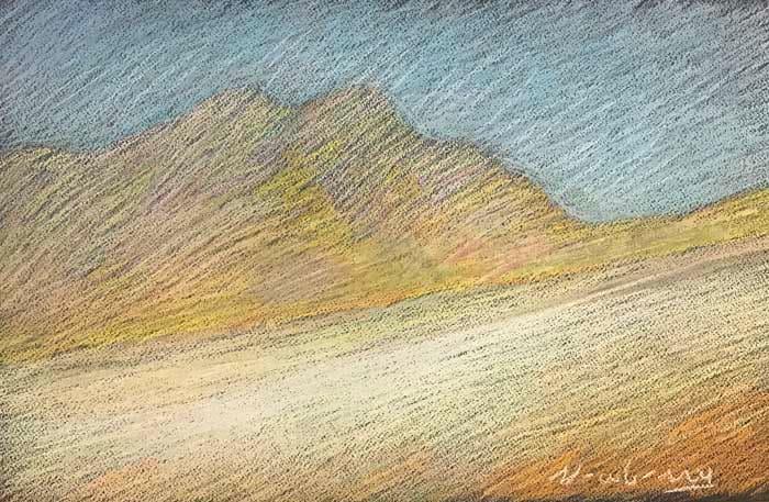 Newberry, Borrego Yellow Shadows, pastel by Michael Newberry