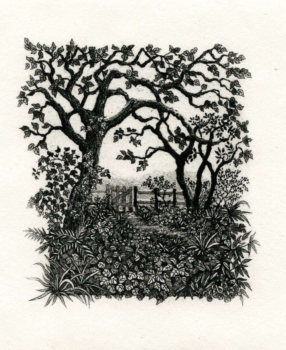 The gate beneath the boughs by stephanie Jane Rampton