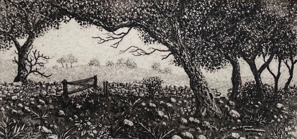 Dusk stroll by stephanie Jane Rampton