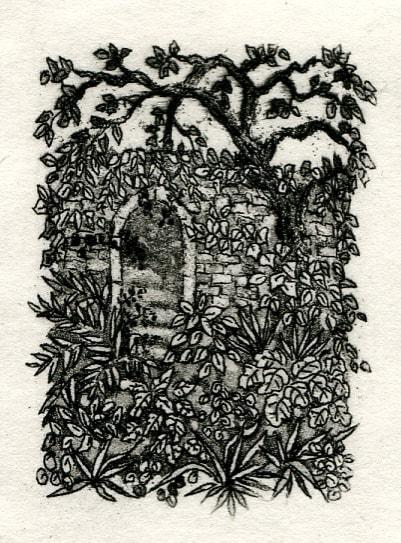 Faerie garden by stephanie Jane Rampton