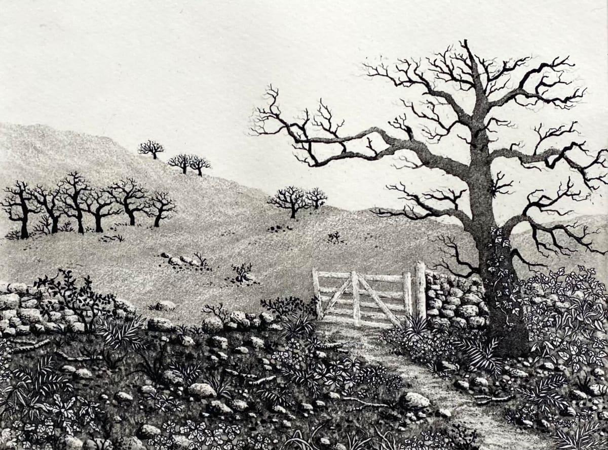 Farm gate by stephanie Jane Rampton