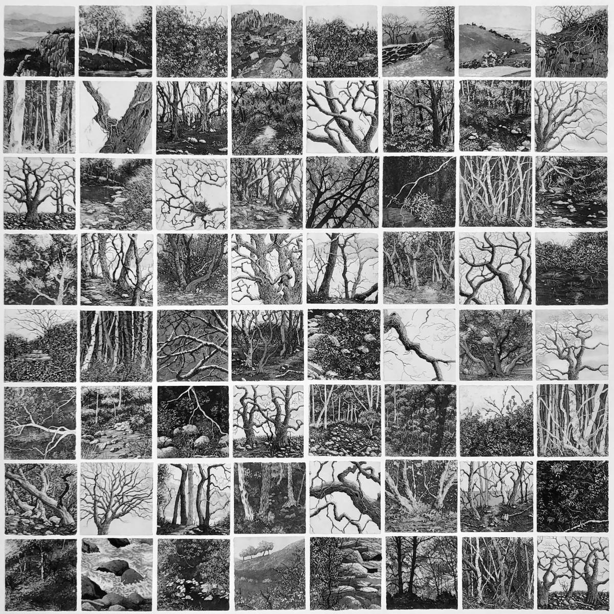 a hush over the land by stephanie Jane Rampton