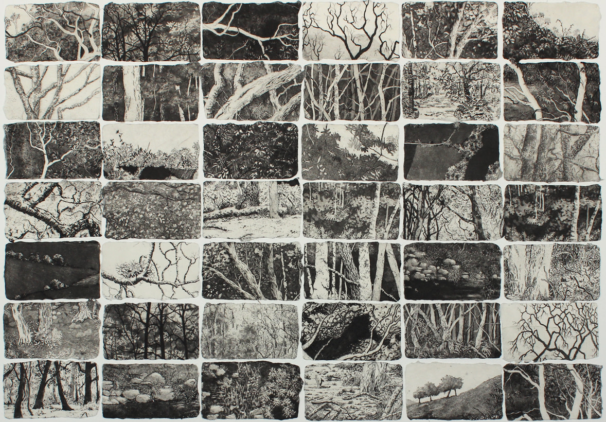 fragments of home by stephanie Jane Rampton