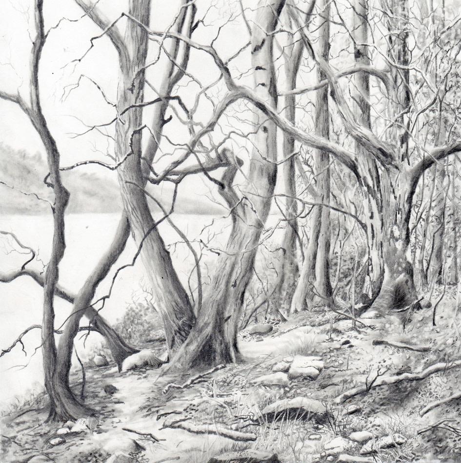 coniston water by stephanie Jane Rampton