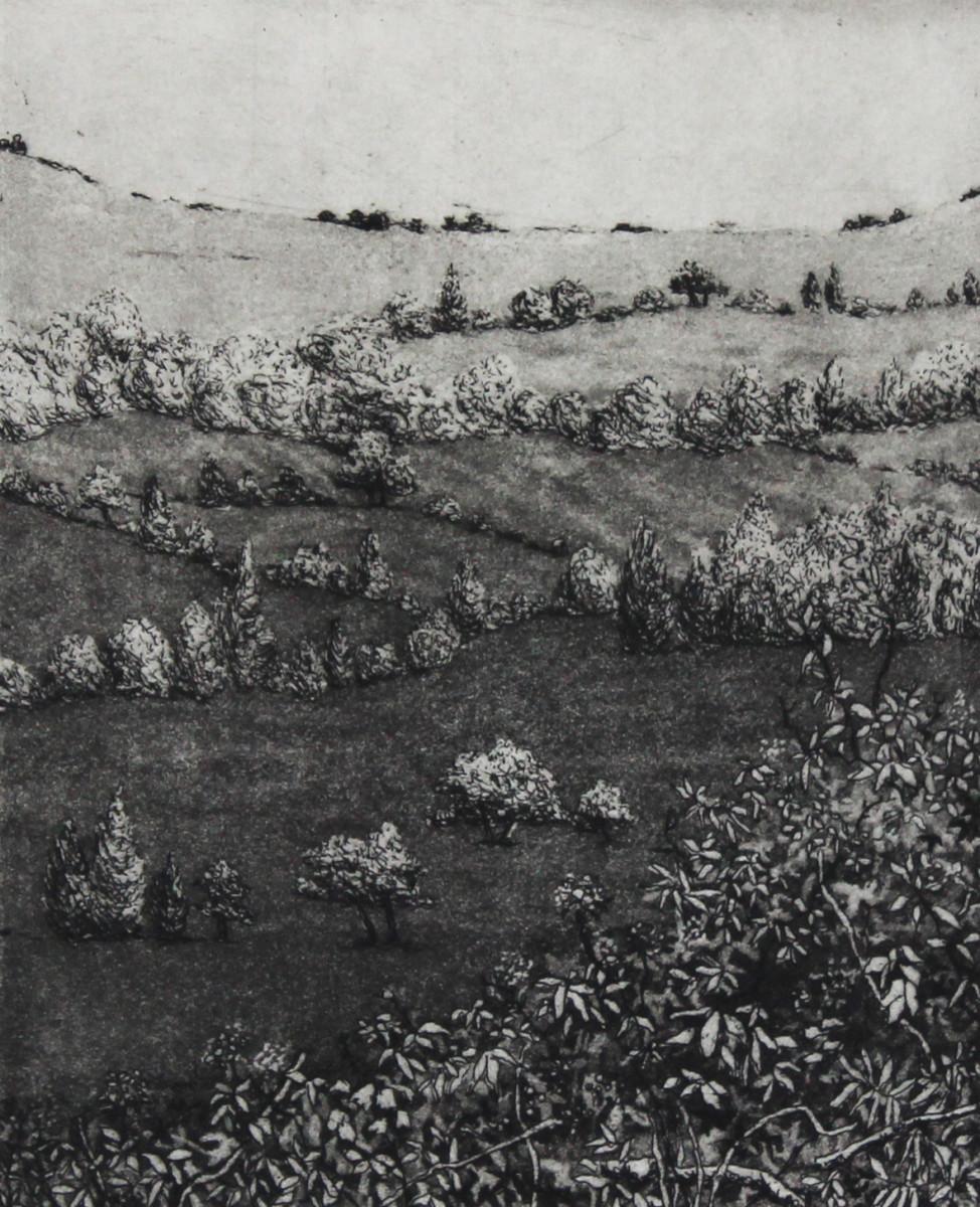 mill lane by stephanie Jane Rampton