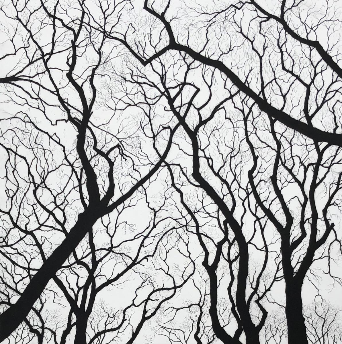 sky touchers by stephanie Jane Rampton