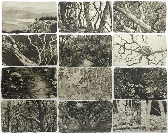 small sanctuaries II by stephanie Jane Rampton