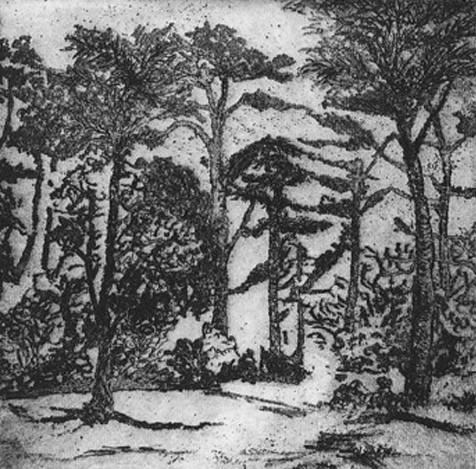 sylvan II by stephanie Jane Rampton