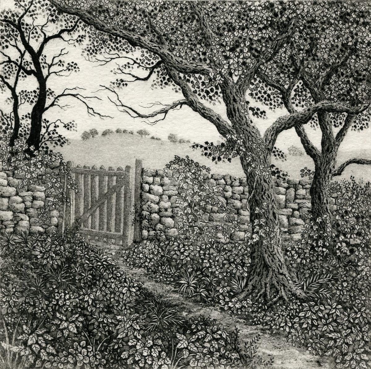 through the garden gate by stephanie Jane Rampton