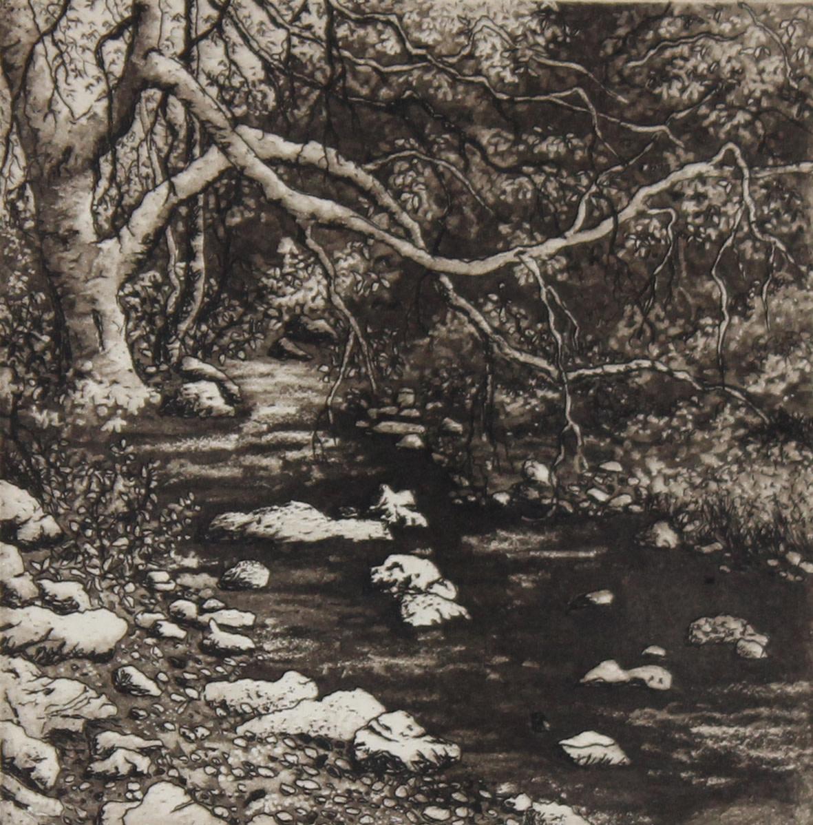 tucker's brook by stephanie Jane Rampton