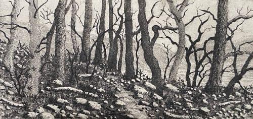 Windermere by stephanie Jane Rampton