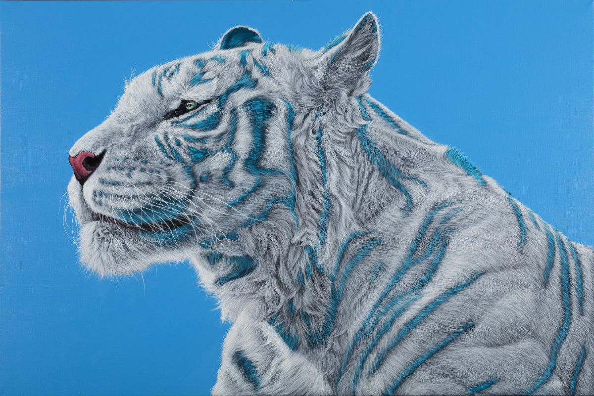 WHITE TIGER ON BLUE, 2016