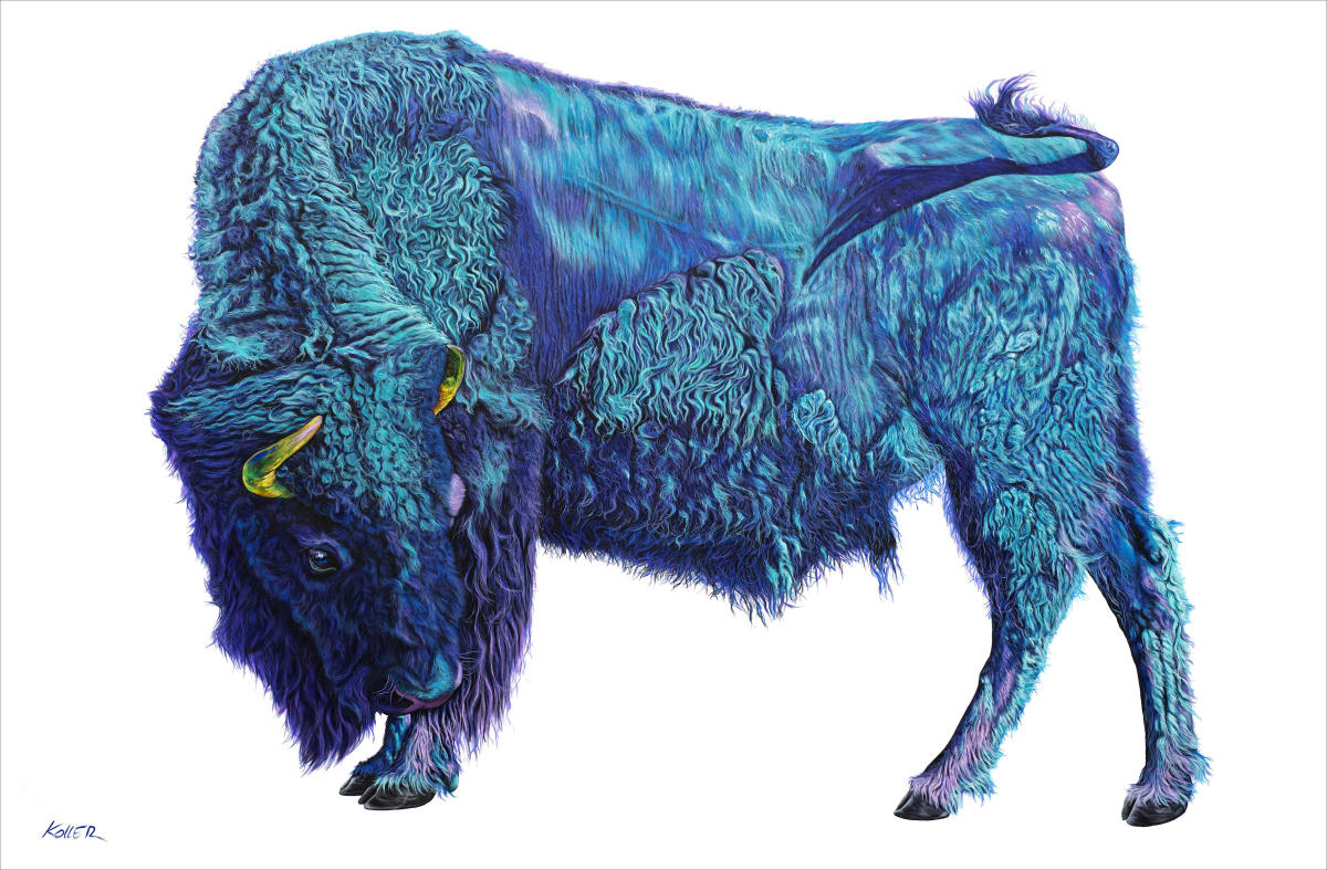 BISON ON WHITE, 2019