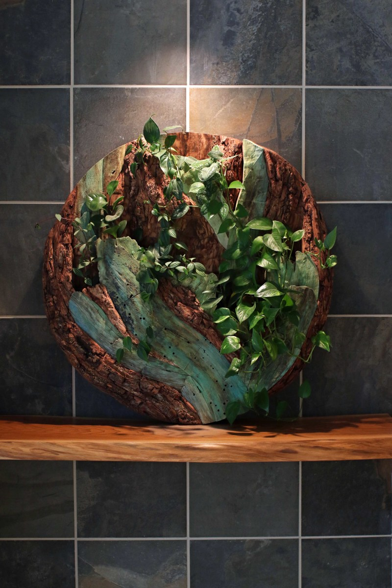 Root System Living Wall by aaron d laux