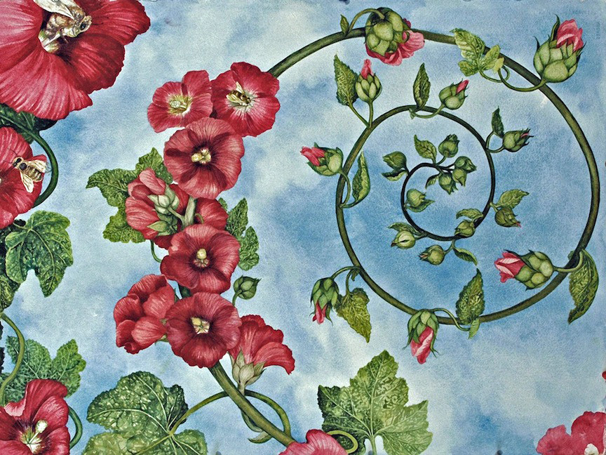Spiral Holly Hocks by Helen R Klebesadel