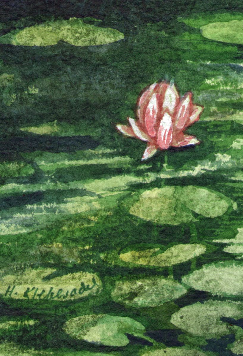 Water Lilies Study ACEO original watercolor by Helen R Klebesadel
