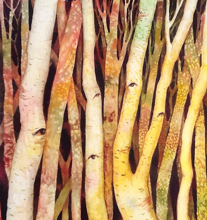Yellow Birch by Helen R Klebesadel