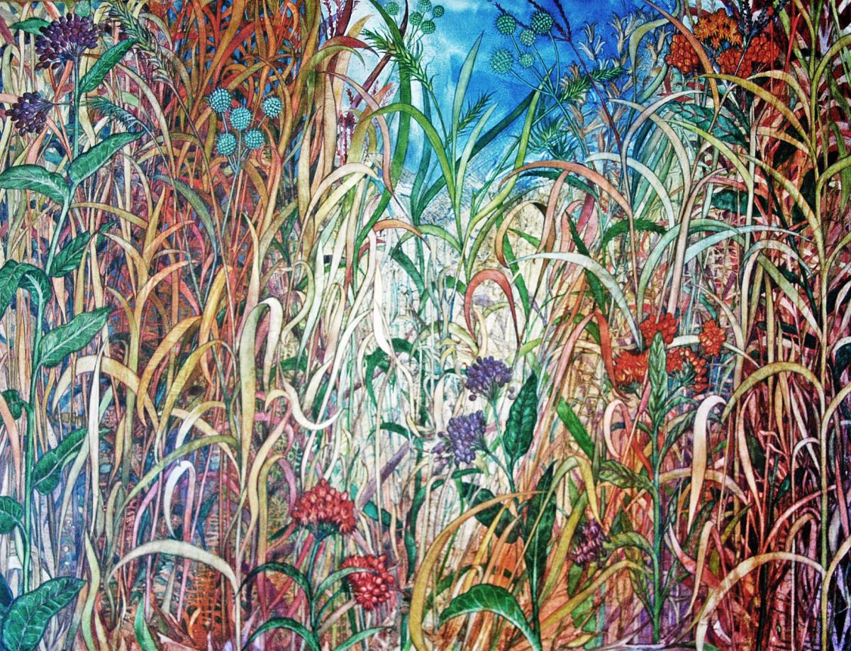 Prairie Plants by Helen Klebesadel