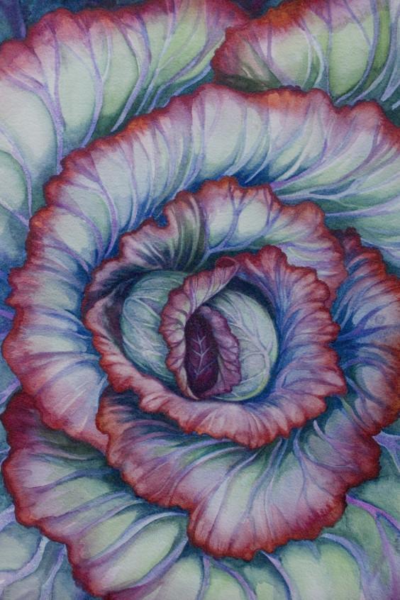 Spiral Cabbage by Helen R Klebesadel