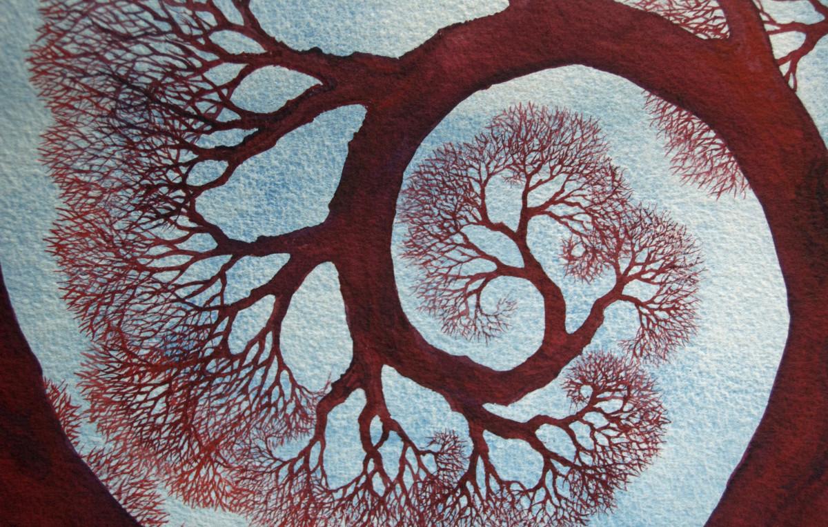 Spiral Branch Study II by Helen R Klebesadel