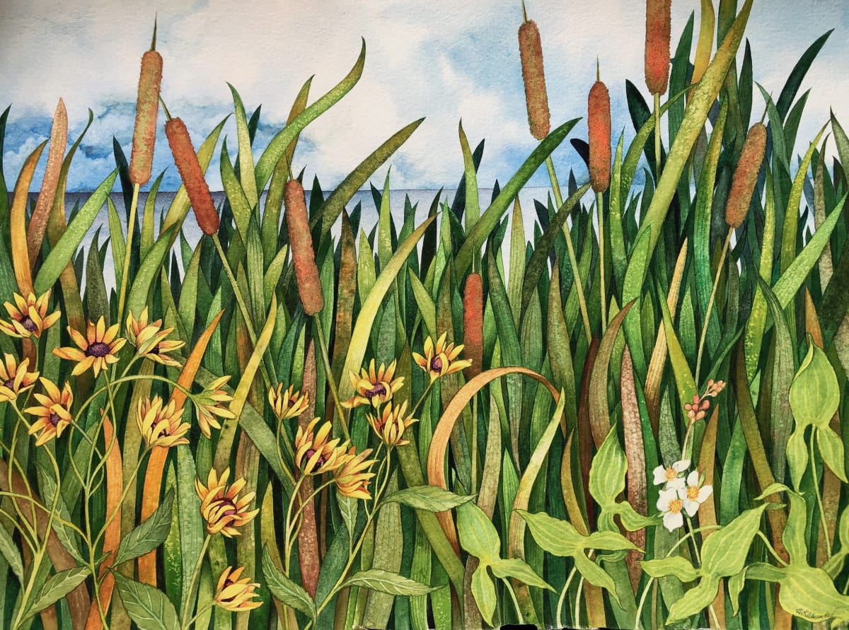 Cattails, Susans, and Arrowroot by Helen R Klebesadel