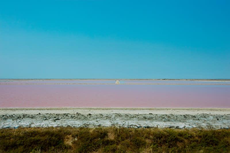 Salt Flat, France Carmargue by Barry Andersen