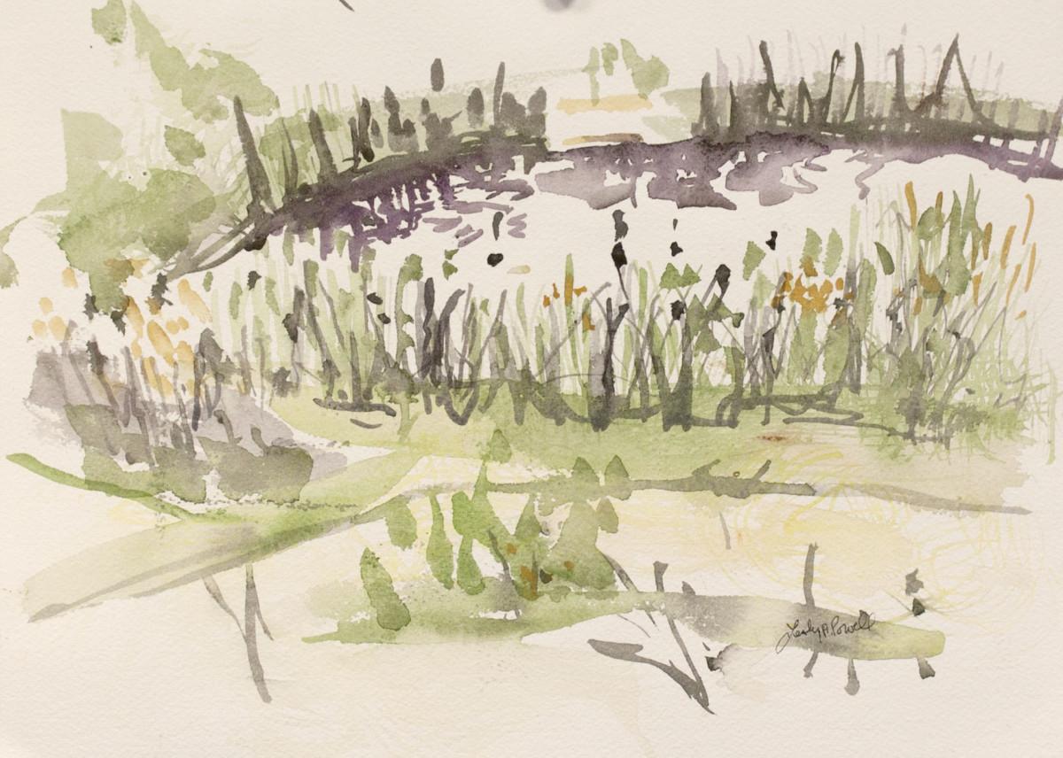 Snake Pond Late Summer.