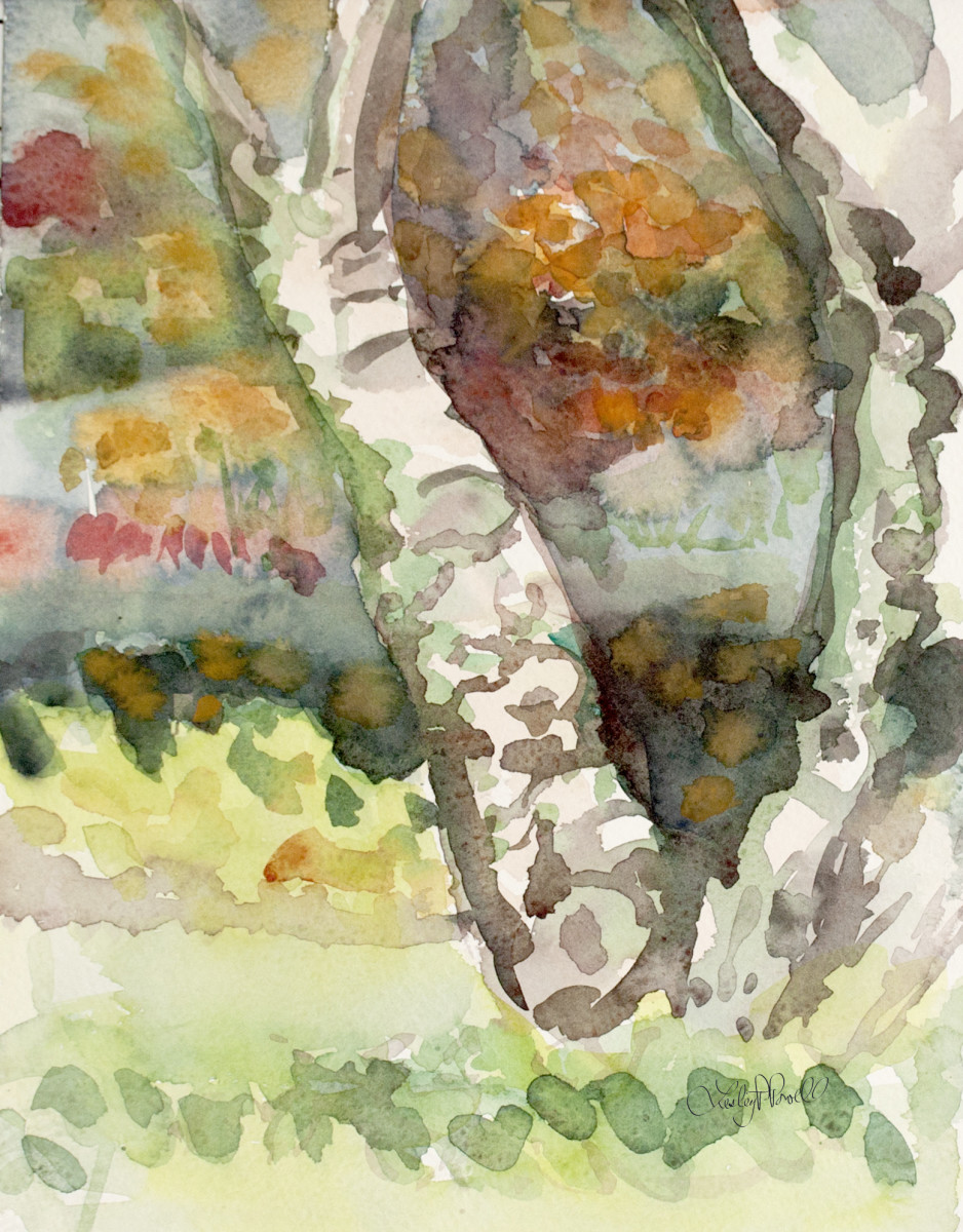 Fall in Conservancy Gardens by Lesley A. Powell