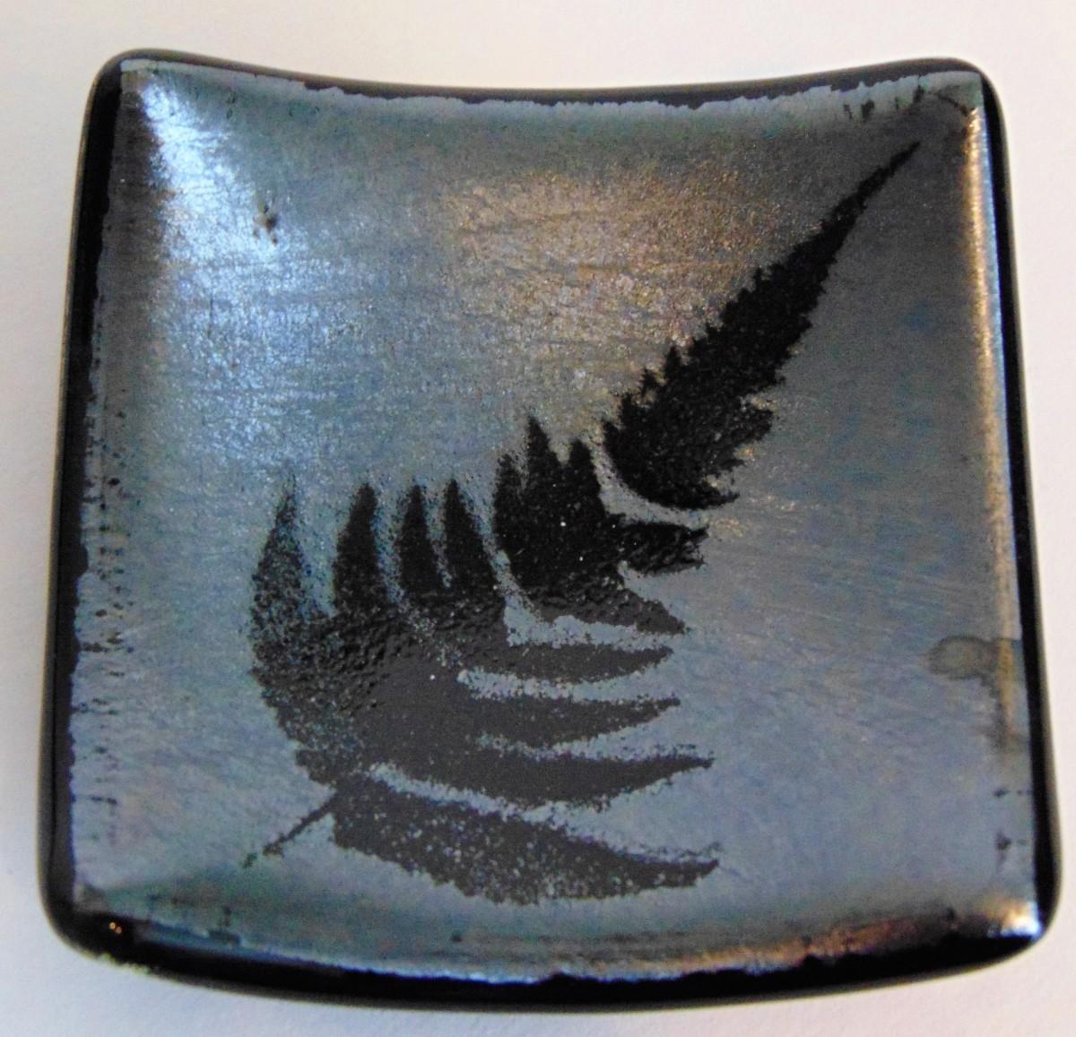 Small Plate-Fern on Silver Irid