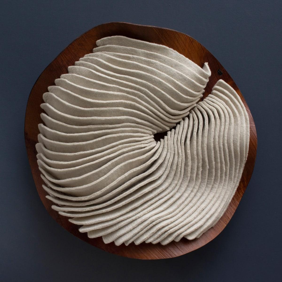 Fossil no. 1 by Kristy Kún