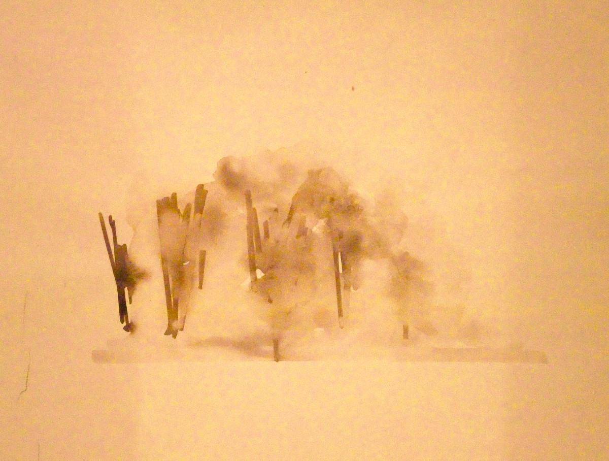 Fog by Ellen Mandelbaum