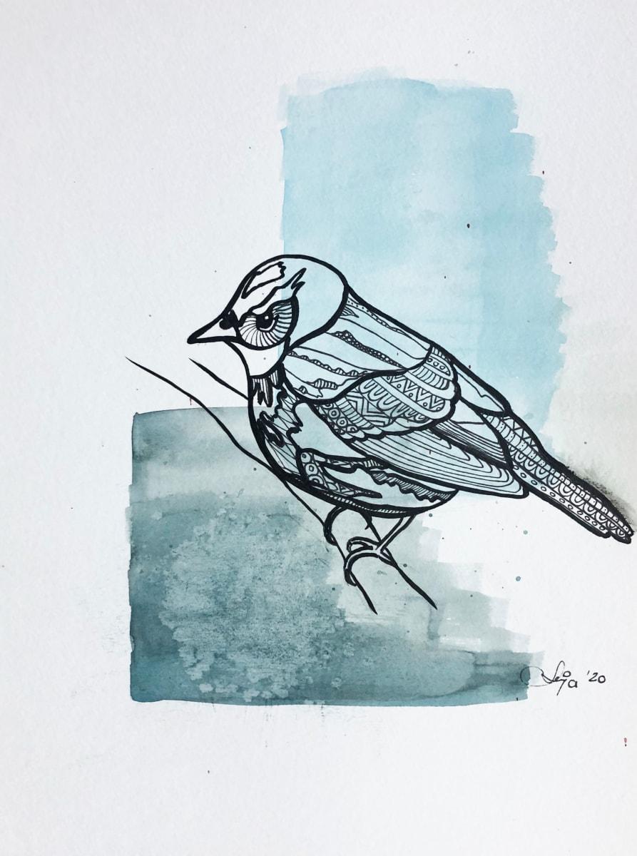 northern parula by Anja Studer