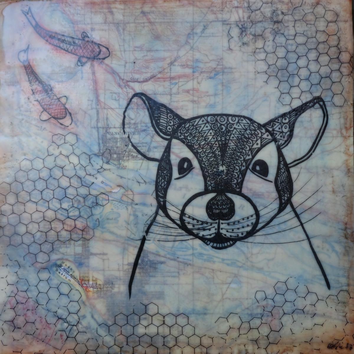 intellectually shy by Anja Studer