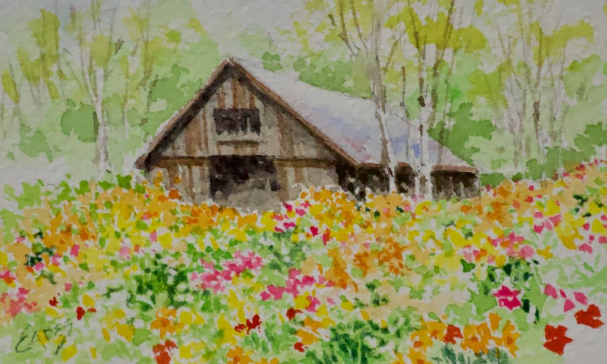 Barnyard Wildflowers by Linda Eades Blackburn