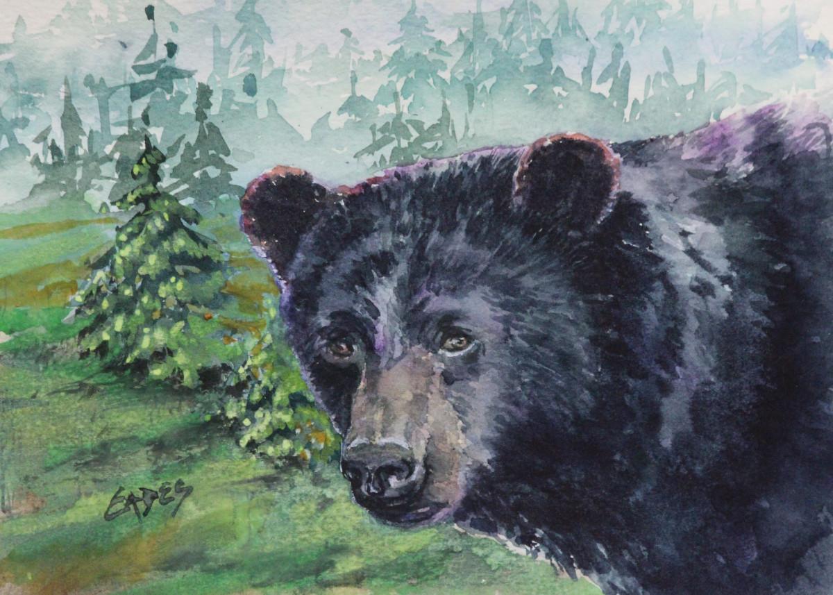 Bear Gaze by Linda Eades Blackburn