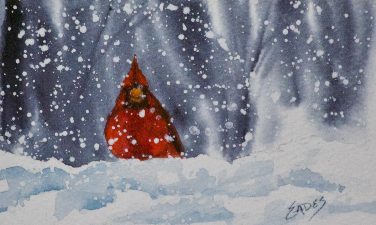 Cardinal Delight II by Linda Eades Blackburn