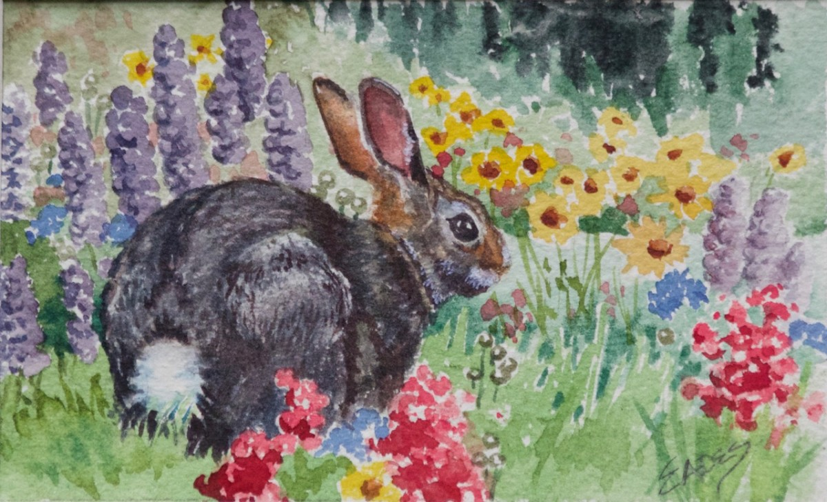 Cottontail and Wildflowers by Linda Eades Blackburn