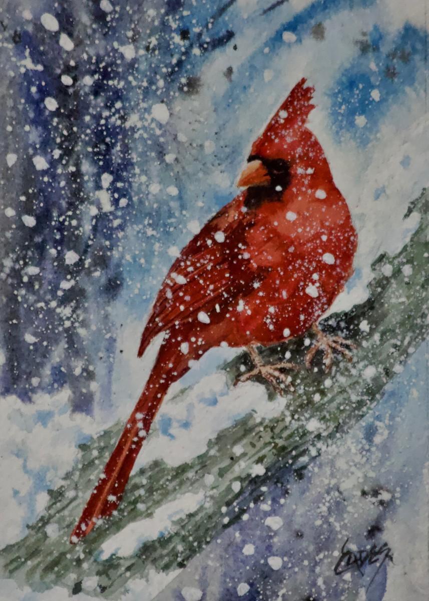 Crazy Cool by Linda Eades Blackburn